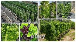 DIY 3 Tower Hydroponic Vertical Garden Kit Water Mains Powered Mr Stacky AU